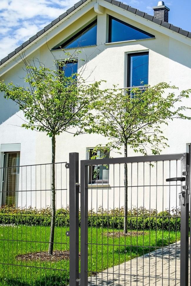 zaunshop gartentor mit einstabmatten f llung 100cm breit x 100 cm hoch verzinkt anthrazit. Black Bedroom Furniture Sets. Home Design Ideas